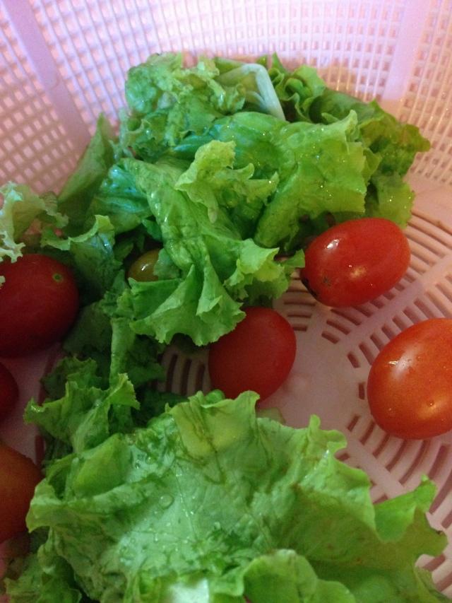 Fresh and Organic